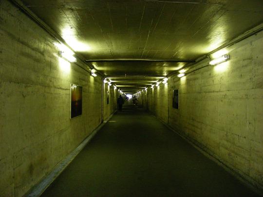 20080208_11