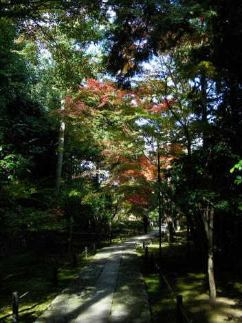 20081122_181