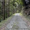 名ばかりの舗装路