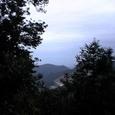 木の間から、阿南市街が・・・