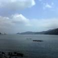 椿の海その1