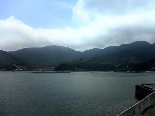 椿の海その2