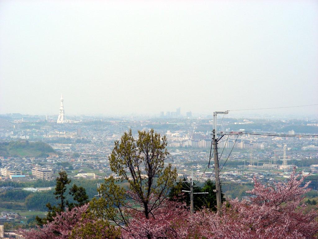 20080413_5