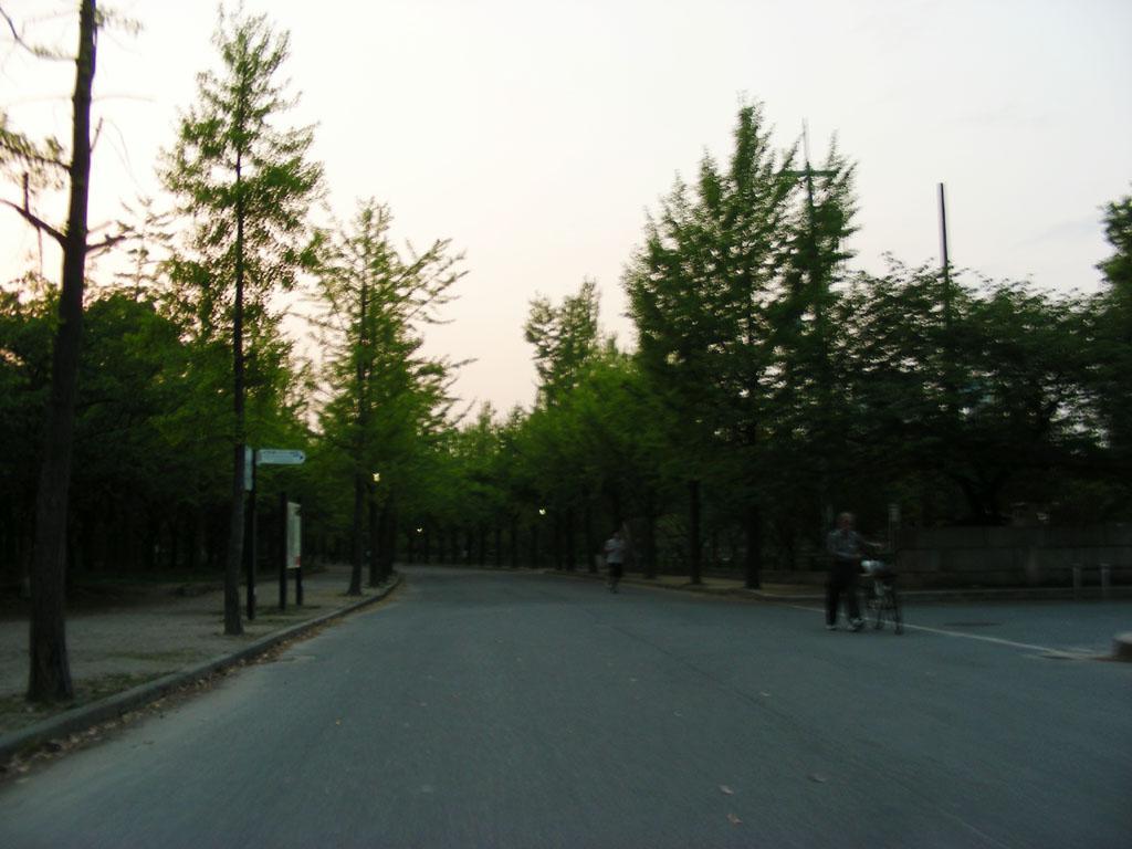 20080426_54